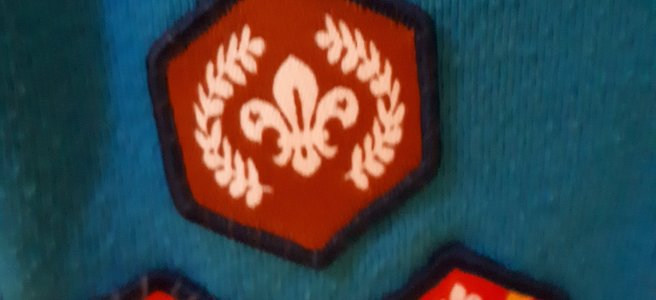 bronze chief scouts award