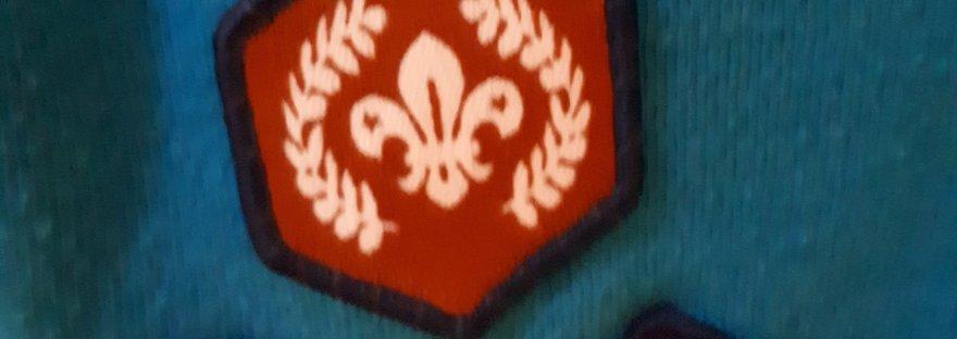 bronze chief scouts award