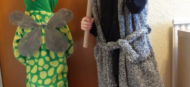 world book day, snapperwack, how to train a dragon, hiccup
